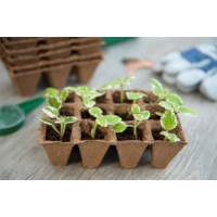 Nature Turfpottrays set a 6 trays