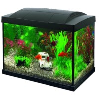 Superfish Start 20 Goldfish Kit Zwart