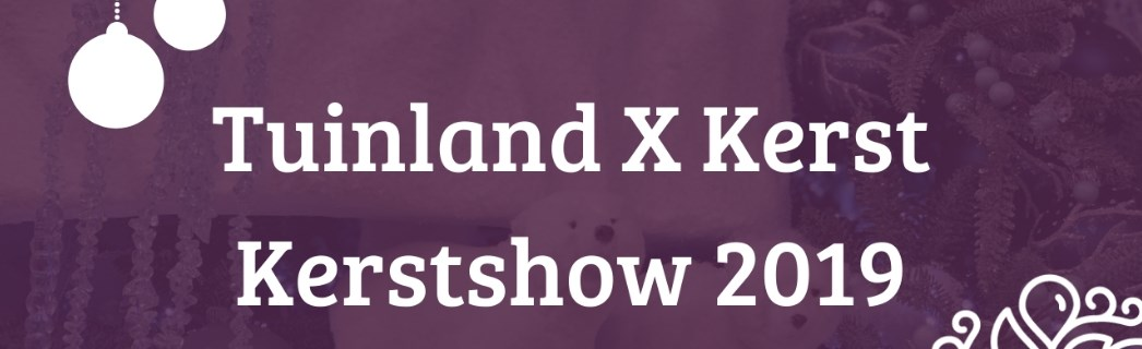 De kerstshow 2019 is open!